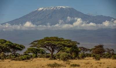 Amboseli Mounk Kilimanjaro, Smalley  Karen , England